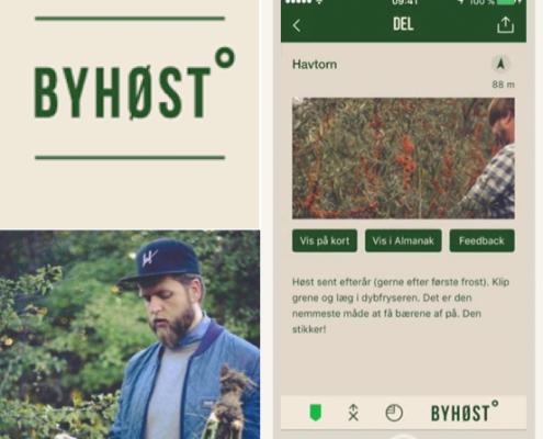 byhøst_